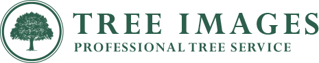 Tree Images | Cincinnati Ohio Tree Services logo