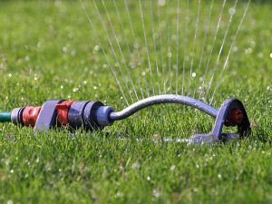 sprinkler watering yard