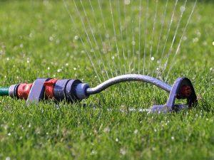 sprinkler watering yard